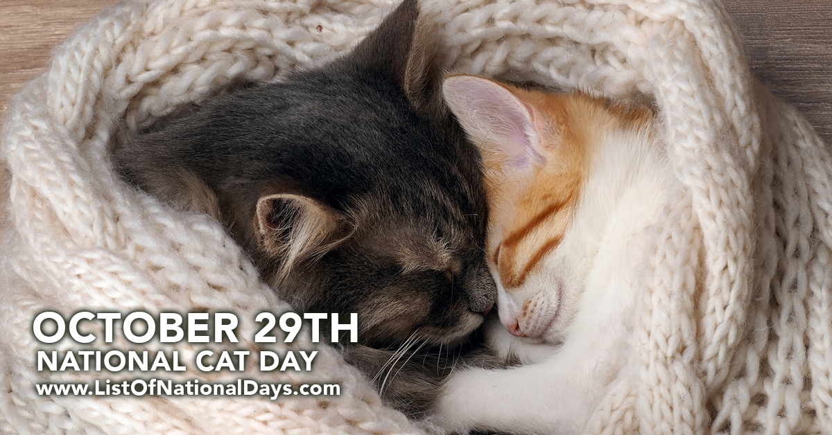 National Cat Day October 29th List Of National Days