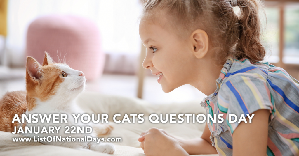 ANSWER YOUR CATS QUESTIONS DAY