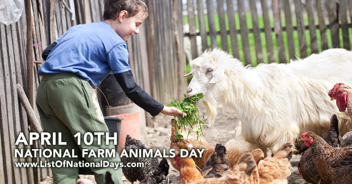 National Farm Animals Day List Of National Days