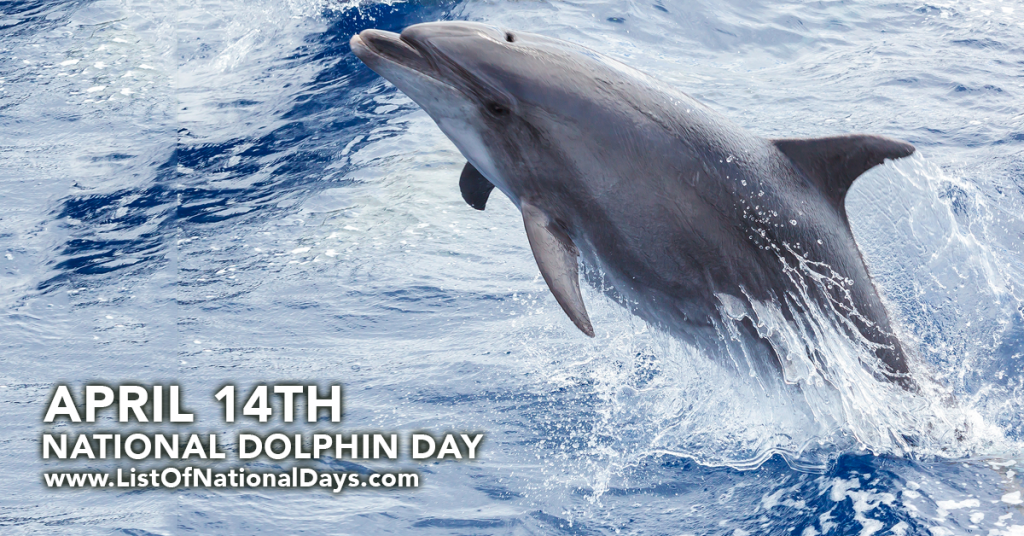 NATIONAL DOLPHIN DAY
