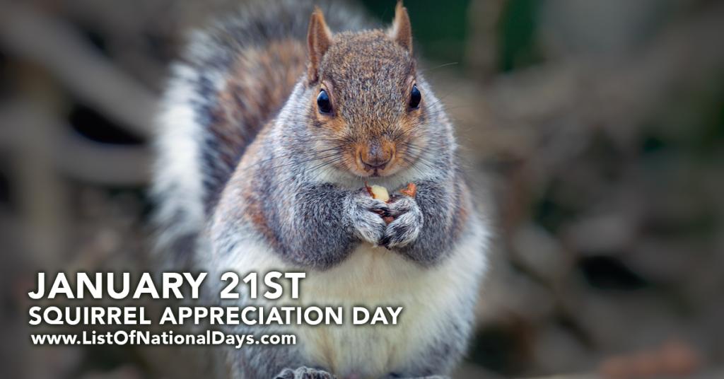 SQUIRREL APPRECIATION DAY