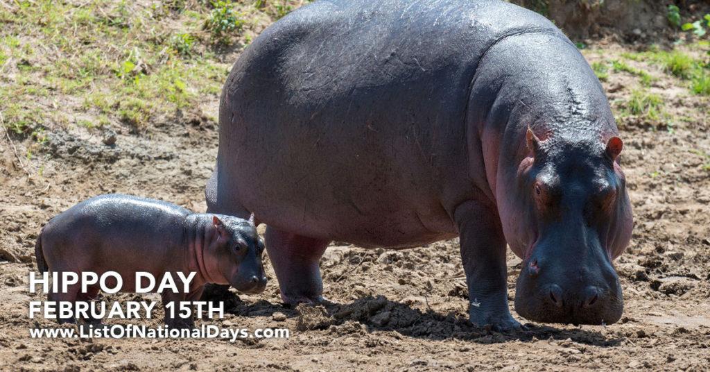 A Hippopotamus and her calf