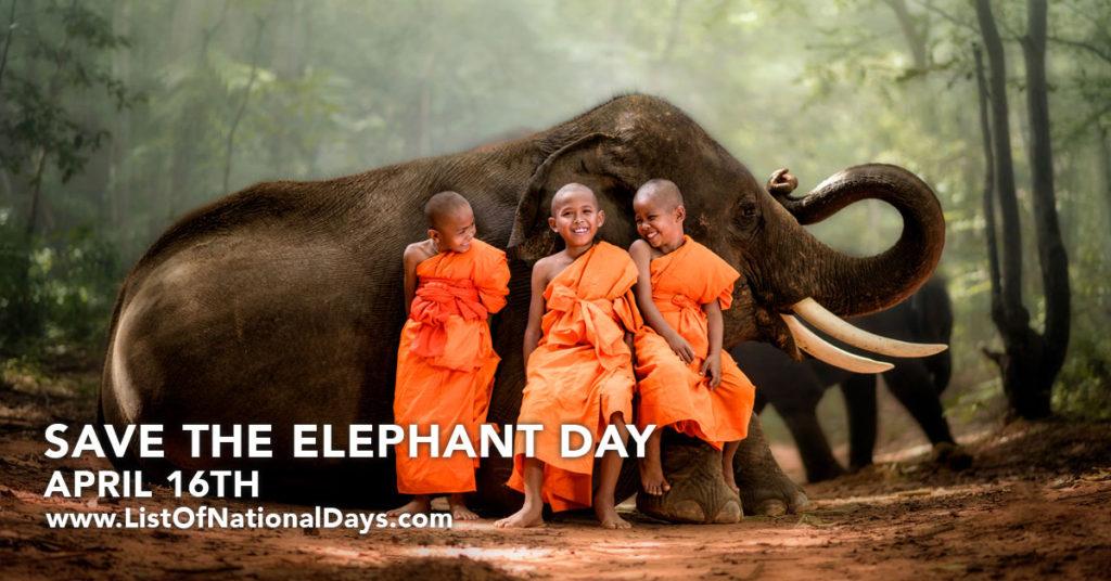 Three children sitting on a small elephant