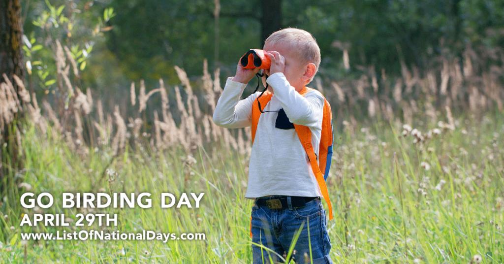 A boy looking through binoculars at birds.