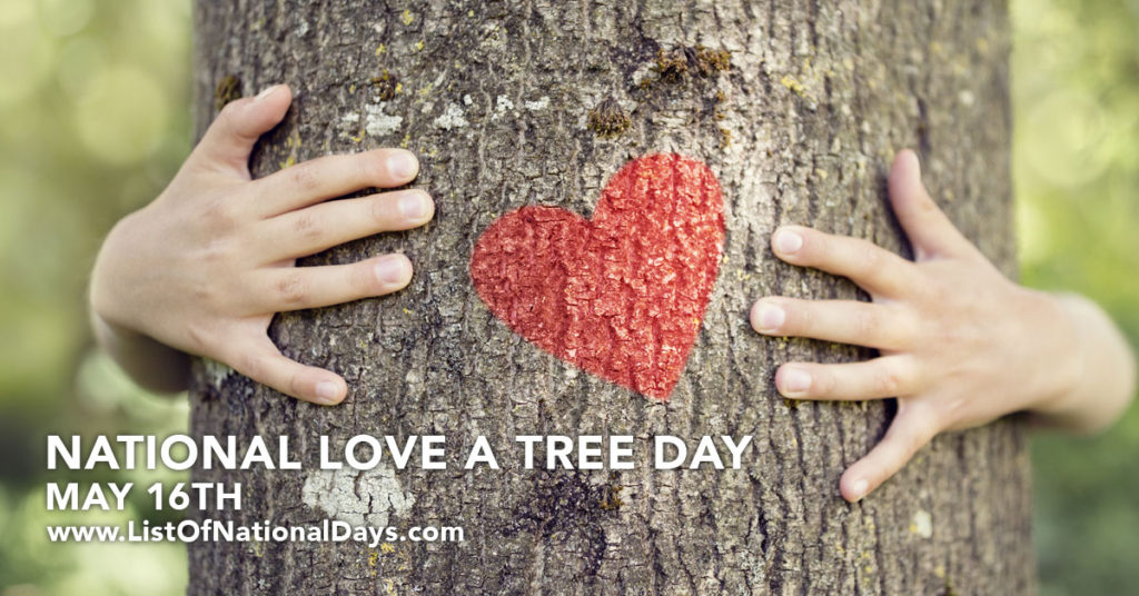 Hands of a person hugging a tree with a red heart painted on it.