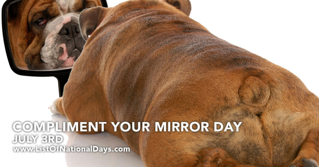 A bulldog looking at it's reflection in a mirror.